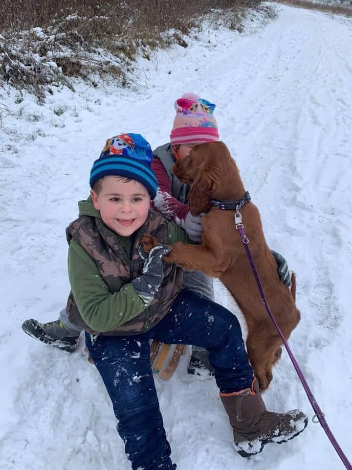 Imádják a havat